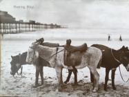Mulod ar draeth Y Rhyl, 1917