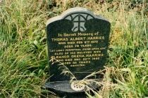 Photograph of the headstone of Thomas Albert...
