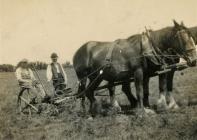Thomas Rees on Nantllan farm, Llandefaelog,...