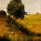 Mike Harries: Field of Gold