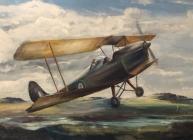 Ted Morgan: Tiger Moth Solo