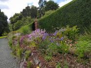 Llysdinam Gardens, 2021